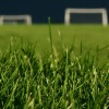Cuidado y manejo de césped en predios deportivos