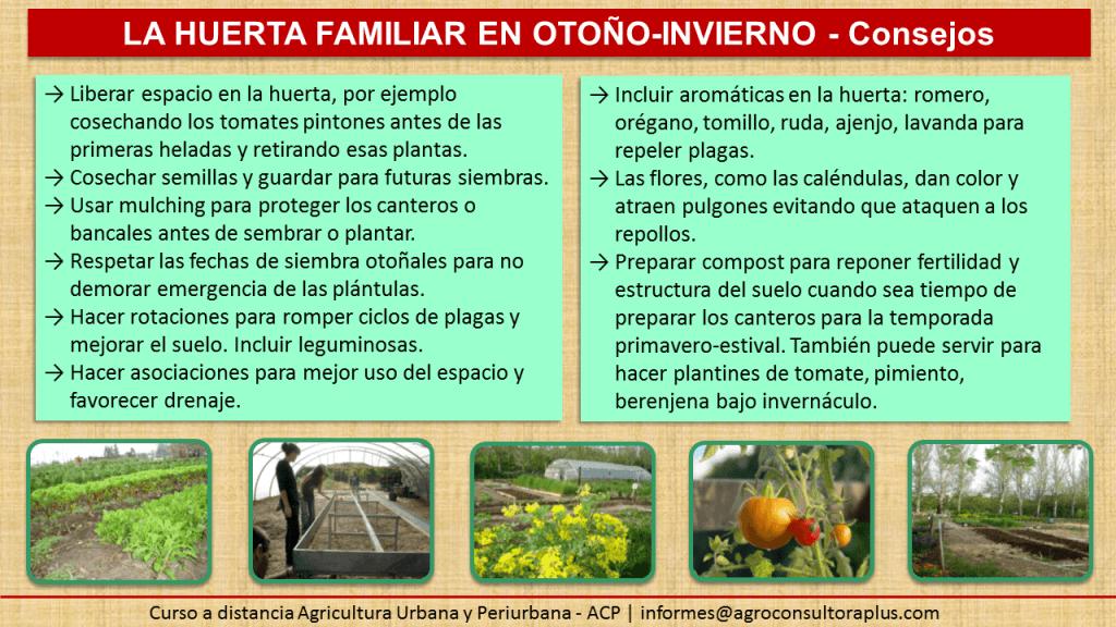 Agricultura Urbana - Consejos